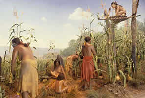 diorama iroquois village nysm